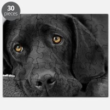 Beautiful Black Labrador Puzzle