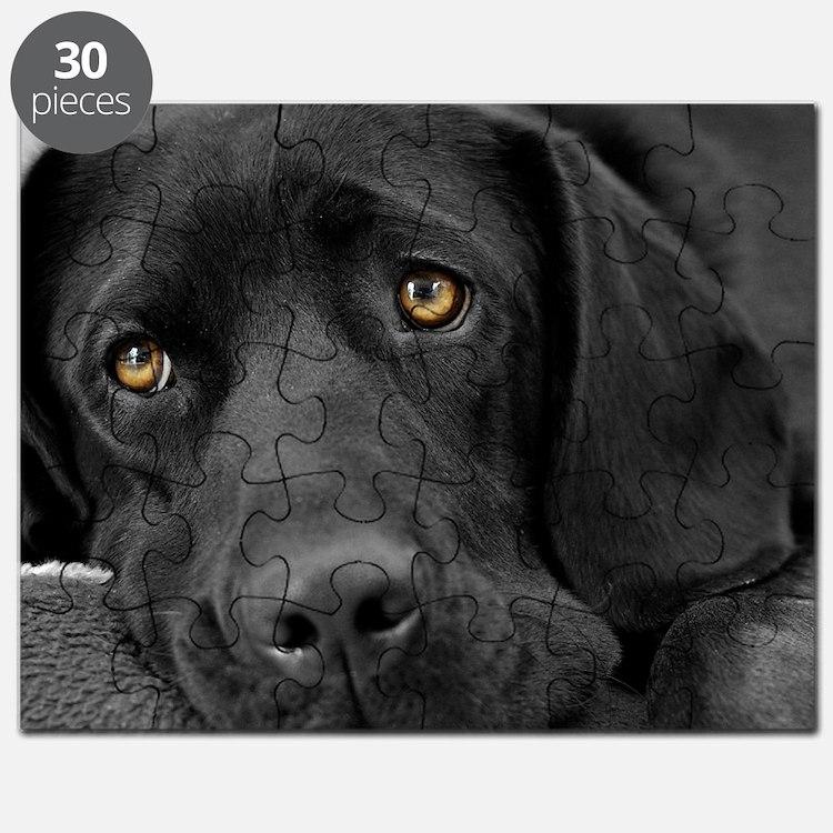 Beautiful Black Labrador Puzzle