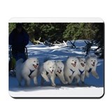 Samoyed Mouse Pads