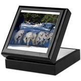 Samoyed Square Keepsake Boxes
