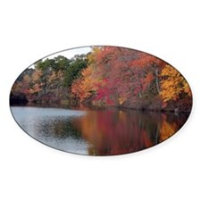 Autumn Colors Decal