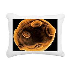 Art of yeast cell buddin Rectangular Canvas Pillow