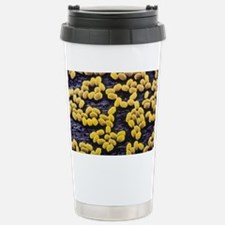 Anthrax bacteria spores Stainless Steel Travel Mug