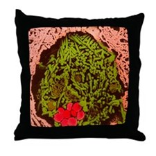 Anthrax bacteria in the lung Throw Pillow
