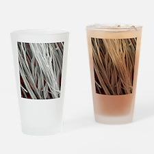 Asbestos fibres, SEM Drinking Glass