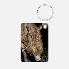 Bearded pig Keychains