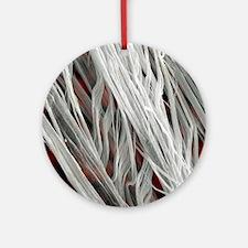 Asbestos fibres, SEM Round Ornament