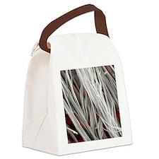 Asbestos fibres, SEM Canvas Lunch Bag