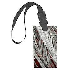 Asbestos fibres, SEM Luggage Tag