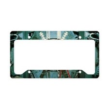 BaBar particle detector, SLAC License Plate Holder