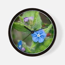 Alkanet (Pentaglottis sempervirens) Wall Clock