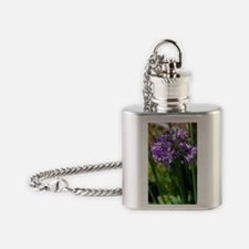 African blue lily 'Bressingham Blue Flask Necklace