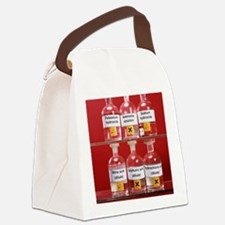 Acids and alkalis Canvas Lunch Bag