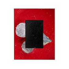 Alkali metals Picture Frame