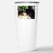 Arizona Desert Wolf Travel Mug