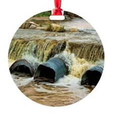rushing river - hdr Ornament