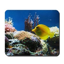 Yellow fish Mousepad
