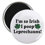 Irish Poop Leprechauns Magnet