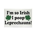 Irish Poop Leprechauns Rectangle Magnet
