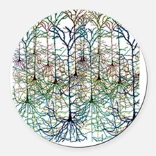 More Neurons Round Car Magnet