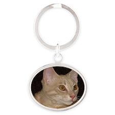 Goldeneyed cat Oval Keychain