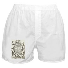 Mathematical Instruments Boxer Shorts