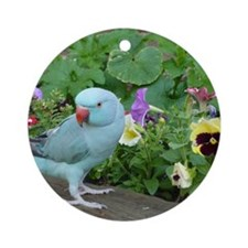 Indian Ringneck in the Garden Round Ornament
