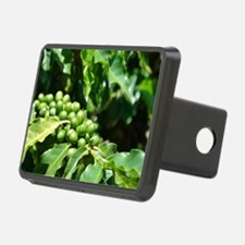 Green Coffee Berries Hitch Cover