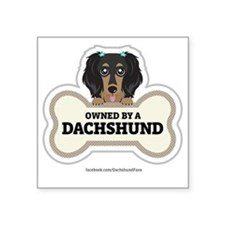 "Owned by a Dachshund Square Sticker 3"" x 3"""