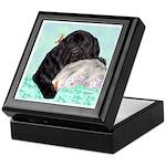 Sleepy Newfoundland Puppy Keepsake Box