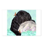 Sleepy Newfoundland Puppy Postcards (Package of 8)