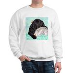 Sleepy Newfoundland Puppy Sweatshirt