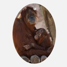 (13) Orang Mother and Child 7374 Oval Ornament