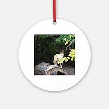 dingo Round Ornament