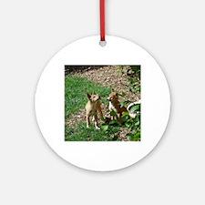 dingo puppies Round Ornament