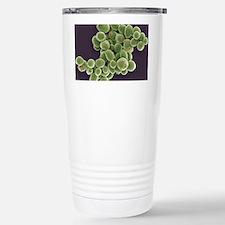 Yeast cells, SEM Travel Mug