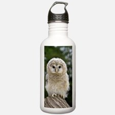 Young ural owl Water Bottle