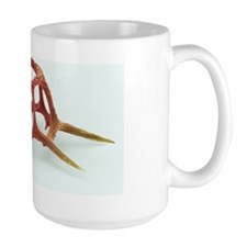 Silicoflagellate, SEM Ceramic Mugs