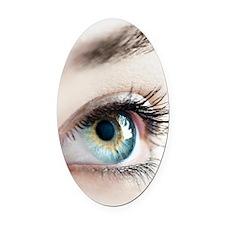 Woman's eye Oval Car Magnet