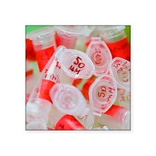 "Used Eppendorf tubes Square Sticker 3"" x 3"""