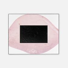rose quartz Picture Frame
