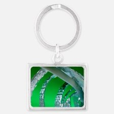 Water pipe and insulation mater Landscape Keychain