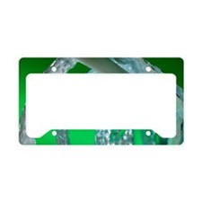 Water pipe and insulation mat License Plate Holder