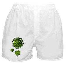 Virus particles, artwork Boxer Shorts