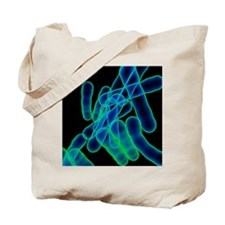 Tuberculosis bacteria, artwork Tote Bag