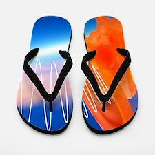 Tinnitus, conceptual artwork Flip Flops
