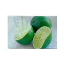 Squeezed lime Rectangle Magnet