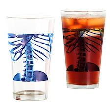 Spine, computer artwork Drinking Glass