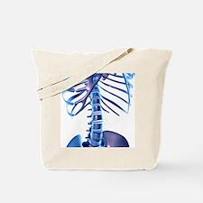 Spine, computer artwork Tote Bag