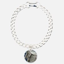 Rabbit flea, SEM Bracelet